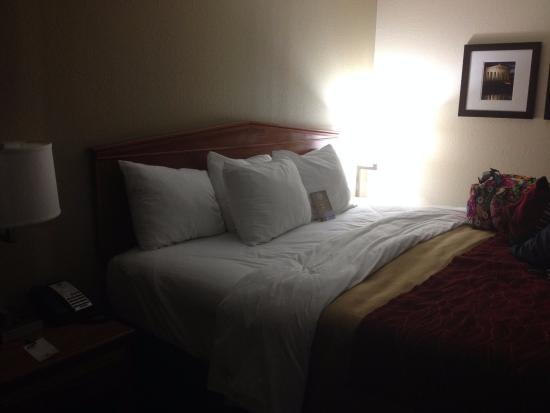 Comfort Inn Nashville/White Bridge: king size bed