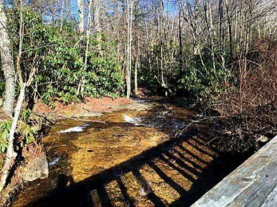 Beech Mountain, NC: received_1281175808575455_large.jpg