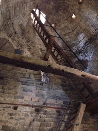 Monestir de Sant Pere de Casserres: photo2.jpg