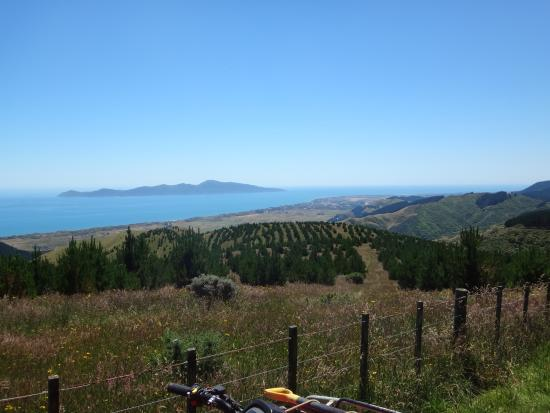 Kapiti Four x 4 Adventure Ltd