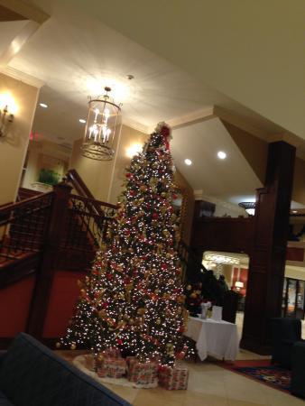แกลลิคูน, นิวยอร์ก: Main Lobby