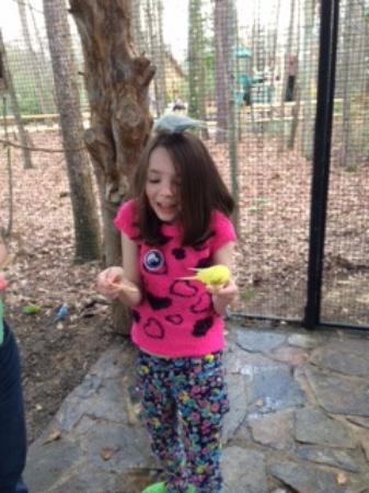 Scotland Neck, Северная Каролина: little birds and little girl in Landing Place