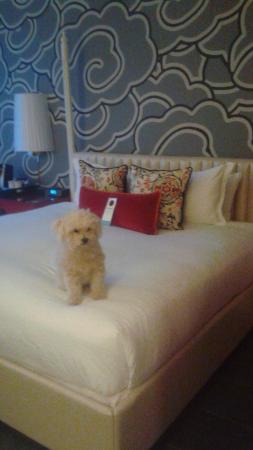 Hotel Monaco Seattle - a Kimpton Hotel: King room