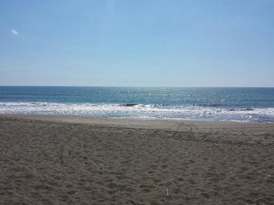 El Cardhu Del Mar