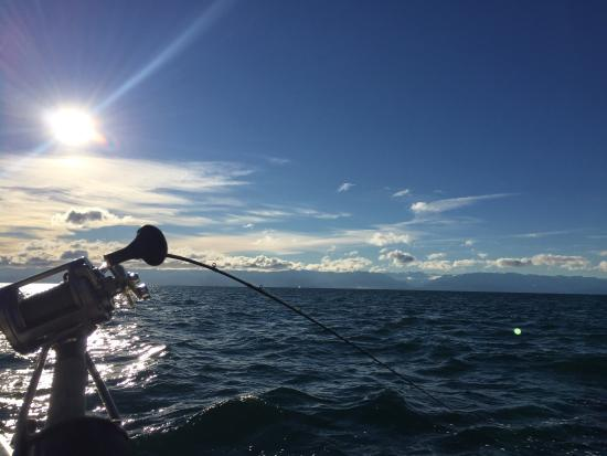 Beasley's Fishing Charters: photo0.jpg