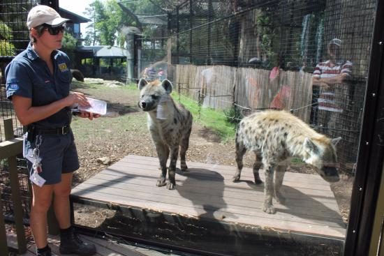 Jamala Wildlife Lodge Updated 2018 Reviews Amp Price