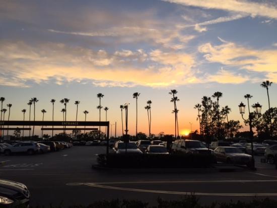 Living Near The Beach Orange County Ca