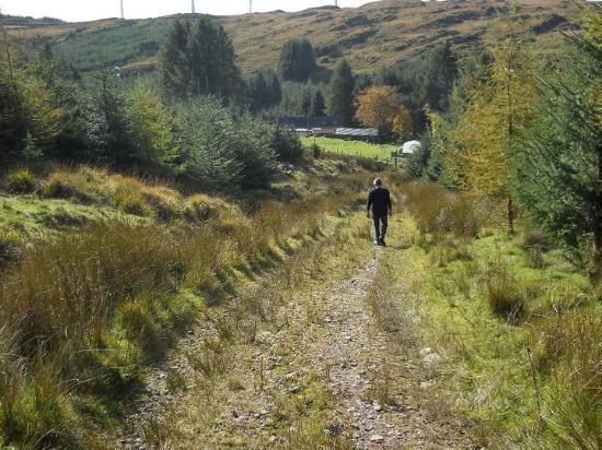 Kilgarvan, ไอร์แลนด์: Oprit van -naar de cottage