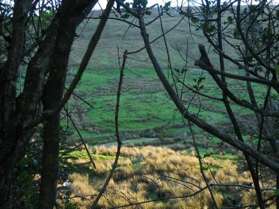 Kilgarvan, ไอร์แลนด์: Uitzicht over de Kerry Hills