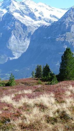 Grindelwald, Suiza: Romantikweg