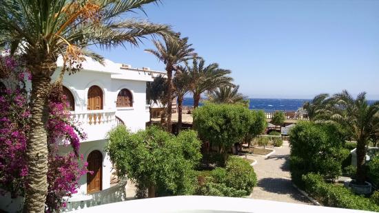 Christina Beach Palace: yard of the hotel