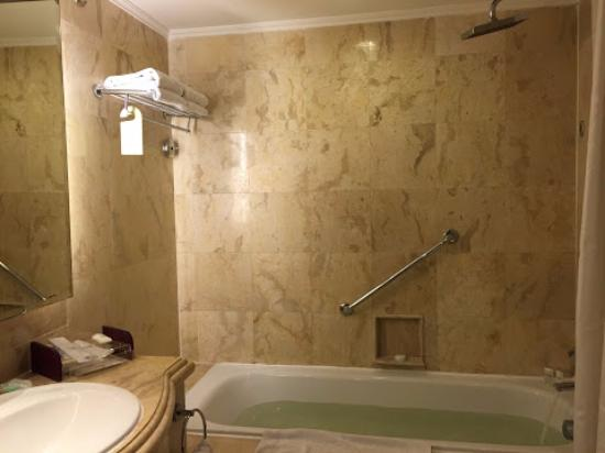 Bathtub with rain shower and large sink - Picture of Hotel Borobudur ...