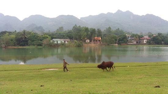 Ninh Binh Province, Vietnam: ninh binh的农村风景