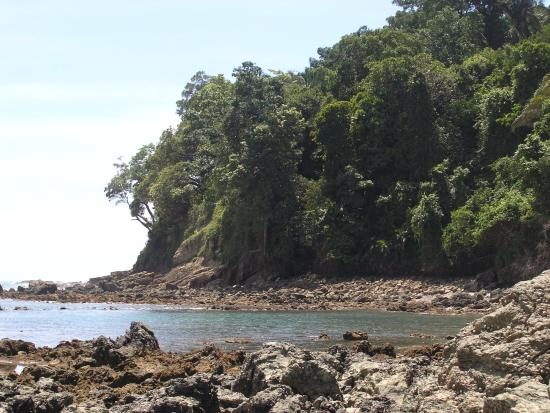 Shana By The Beach, Hotel Residence & Spa: La plage du parc Manuel Antonio, à proximité de l'hôtel