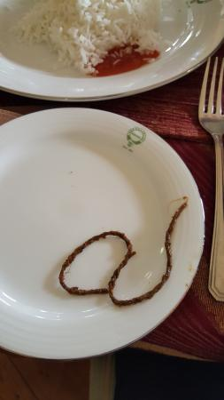 Bandarawela Hotel: Piece of rope in the meal.