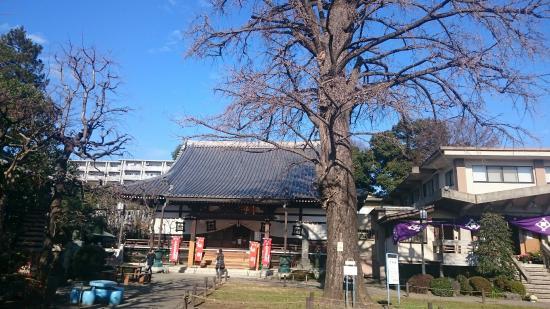 Joen-ji Temple