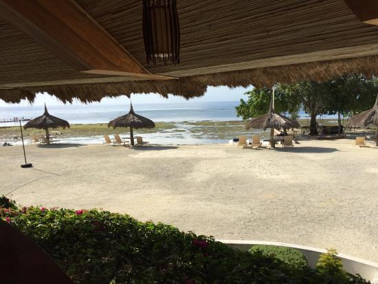 Bluewater Panglao Beach Resort: photo3.jpg