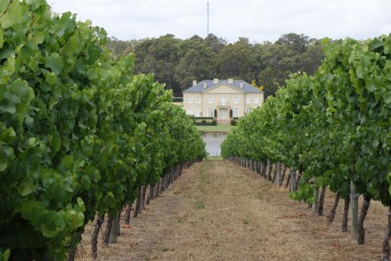 Margaret River Discovery Co. Tours: Fraser Gallop