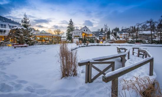 Hotel Deimann: Teichansicht Winter
