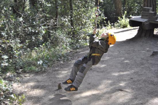El Bosc Vertical, Parc d'aventura entre els arbres
