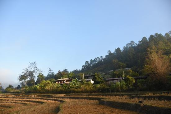 Karen Hill Tribe Lodge: morning view of the lodge