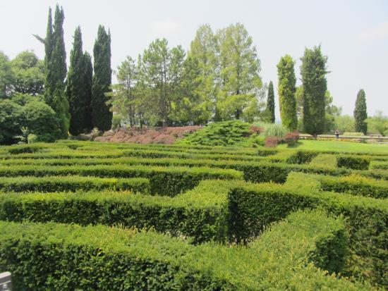 Parco sigurta picture of parco giardino sigurta valeggio sul mincio tripadvisor - Parco giardino sigurta valeggio sul mincio vr ...