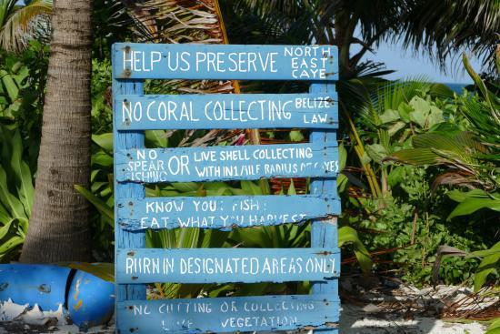 Glover's Atoll Resort: 16