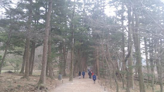 Buan-gun, Южная Корея: path