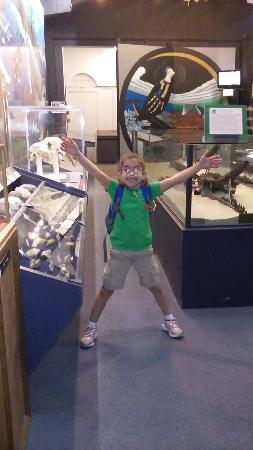 Aurora Fossil Museum: My budding Paleontologist visits as often as possible.