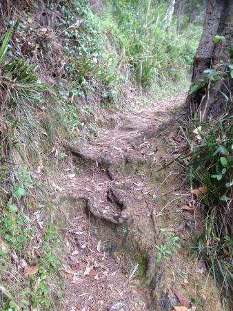 Longbeach Clifftop Retreat照片