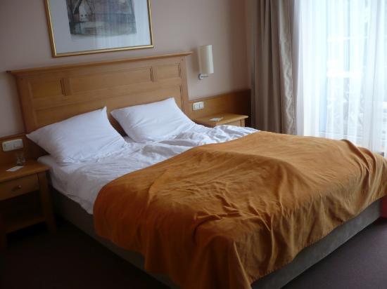 Hotel Bellevue : Room