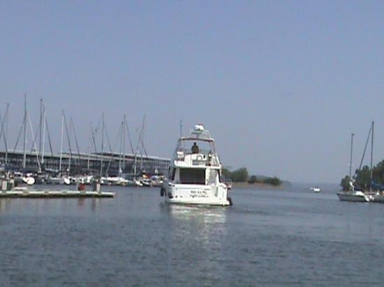 Gilbertsville, KY: Kentucky Dam Marina View
