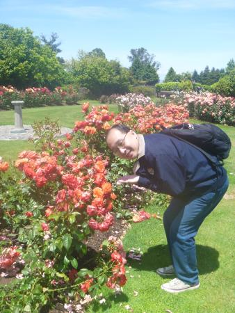 Joan Williamson Rose Garden