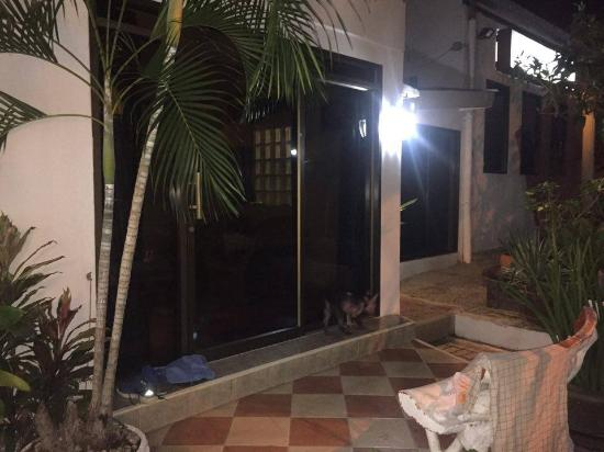 Villa Oranje: room 15