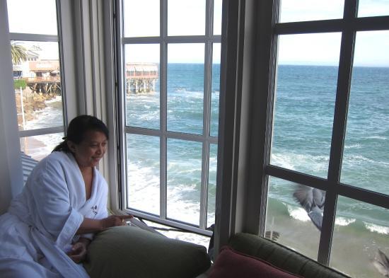 Spindrift Inn: Beggar seagulls crowd the windows at breakfast hour