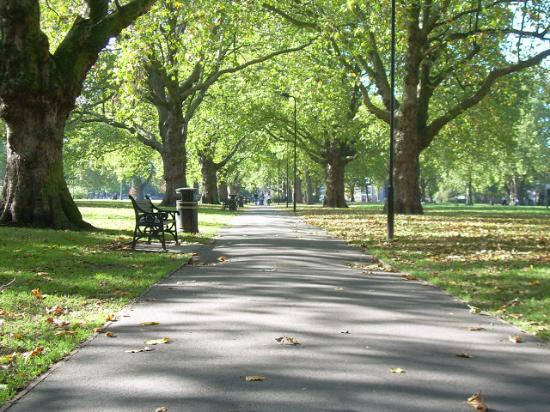 London Fields Park