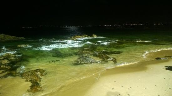 Marazul Hotel: playa frente al hotel