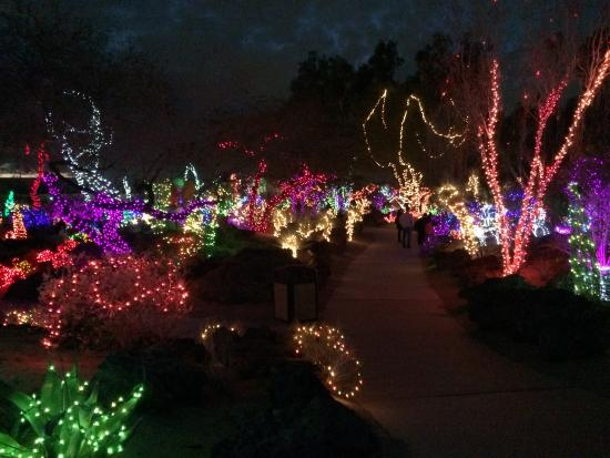 Christmas Lights At The Cactus Garden In Henderson Nv Picture Of Ethel M Chocolates Factory