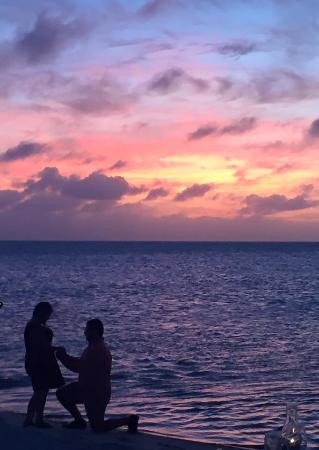 engagedsunset at little palm island - picture of the dining