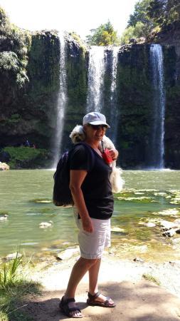 Whangarei, Νέα Ζηλανδία: 20151228_120039_large.jpg