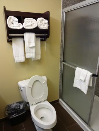 Quality Inn: fluffy towels and loo