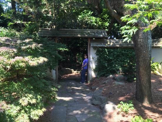 Image Gallery Jc Raulston Arboretum