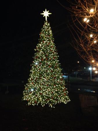 Blue Ridge Scenic Railway: Downtown Blue Ridge Christmas Tree