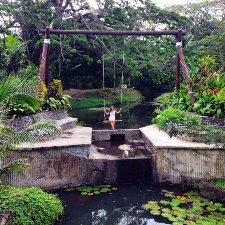 Koro Sun Resort and Rainforest Spa: photo0.jpg