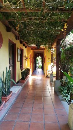 Hotel Casa Antigua: Hallway to room