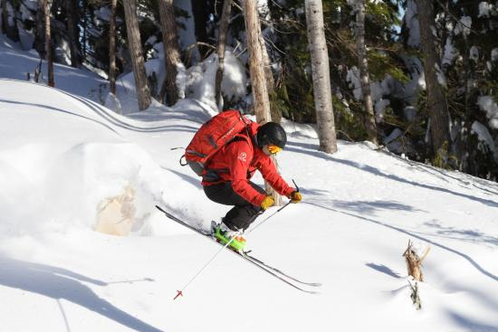 Powder Mountain Cat and Heli Skiing: Guide showing his ability...