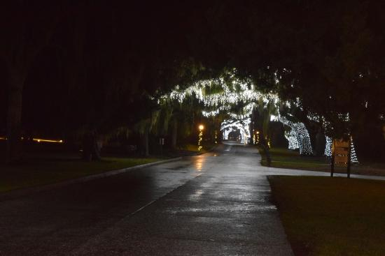 Jekyll Island Club Resort Christmas On Entrance Drive