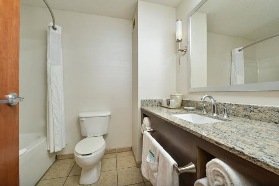 Holiday Inn Express Hotel & Suites Dillsboro: Guest Bathroom