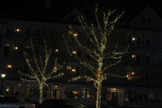 Bedford, Pensilvania: trees
