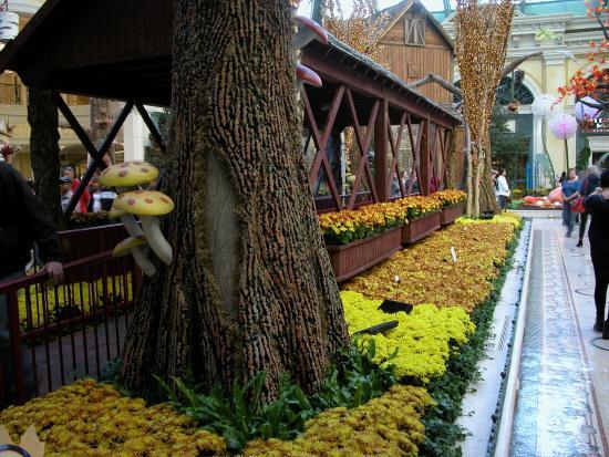 Cute Igloo Picture Of Bellagio Conservatory Botanical Garden Las Vegas Tripadvisor